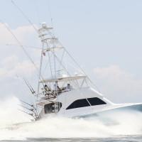 "Top Boat |  Photo by <a href=""http://www.mgcbcphotos.com/alariclambert/alaricLambert/Home.html"" target=""_blank""> Alaric Lambert</a>"