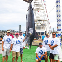 3rd Place Blue Marlin | Photo by Alaric Lambert