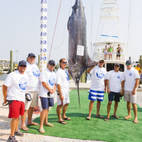 "3rd Place Blue Marlin |  Photo by <a href=""http://www.mgcbcphotos.com/alariclambert/alaricLambert/Home.html"" target=""_blank""> Alaric Lambert</a>"