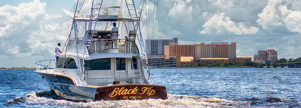 Black-Tip
