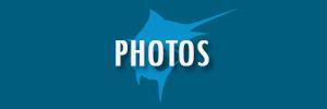 Photos